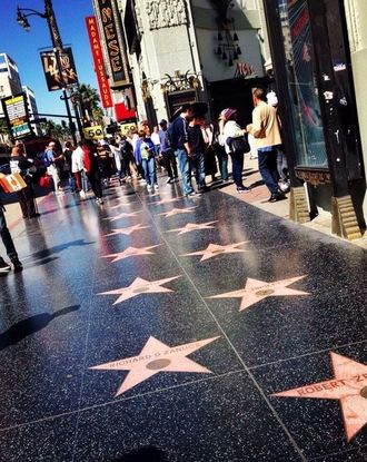 Stars along Hollywood Walk of Fame sidewalk