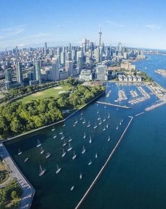 Aerial view of Toronto's Billy Bishop Airport and harbour during daytime