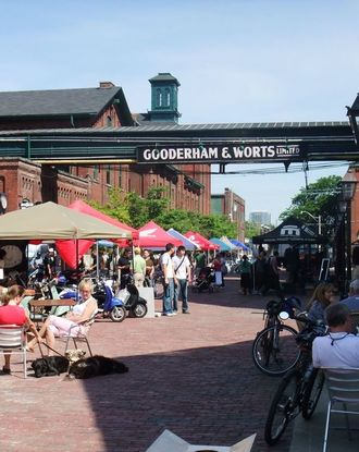 Outdoors kiosks during a daytime event in the middle of the Distillery District