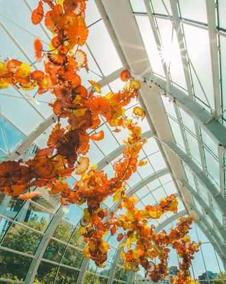 Art hanging from the Chihuly Garden and Glass roof with view on the Space Needle