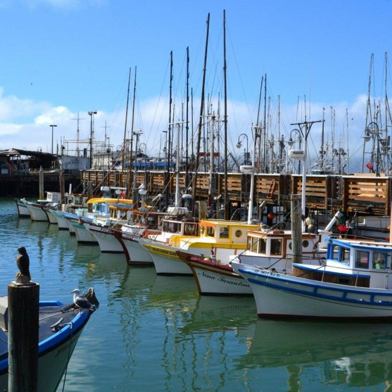 View of docked boats at the Fisherman's Wharf in San Francisco