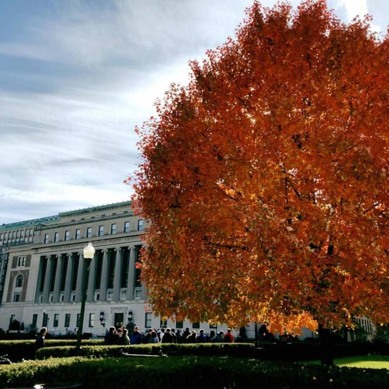 Autumn on Morningside campus on Columbia University