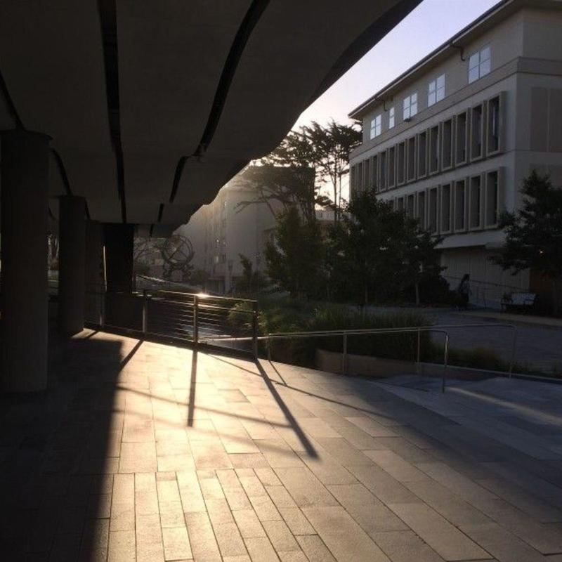 Morning light on USF campus