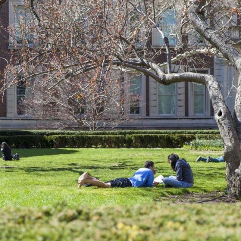 Students reading on York University's campus grass