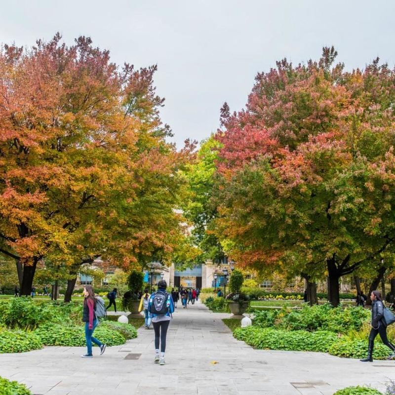 Students walking on campus at the University of Chicago