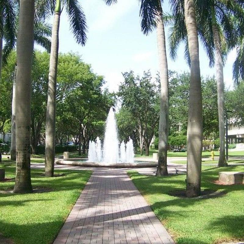 Water fountain in a green space at the University of Miami